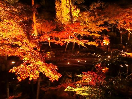 岩屋堂公園の紅葉2018見頃とライトアップ期間、無料駐車場