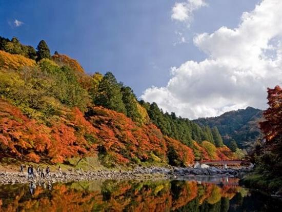 香嵐渓2018年紅葉の見頃はいつ?もみじまつりとライトアップの期間は?