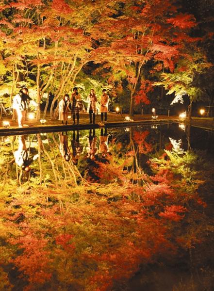 曽木公園紅葉2019ライトアップ期間はいつから?時間とアクセス・料金・無料駐車場、渋滞情報まとめ!