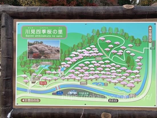 川見四季桜の地図