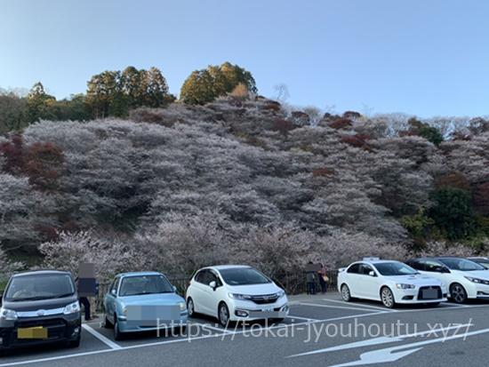 小原四季桜の2018秋駐車場