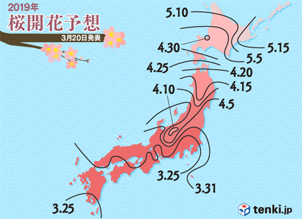 2019年桜の開花予想日
