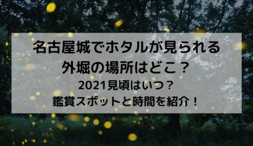 名古屋城でホタルが見られる外堀の場所はどこ?2021見頃はいつ?鑑賞スポットと時間を紹介!